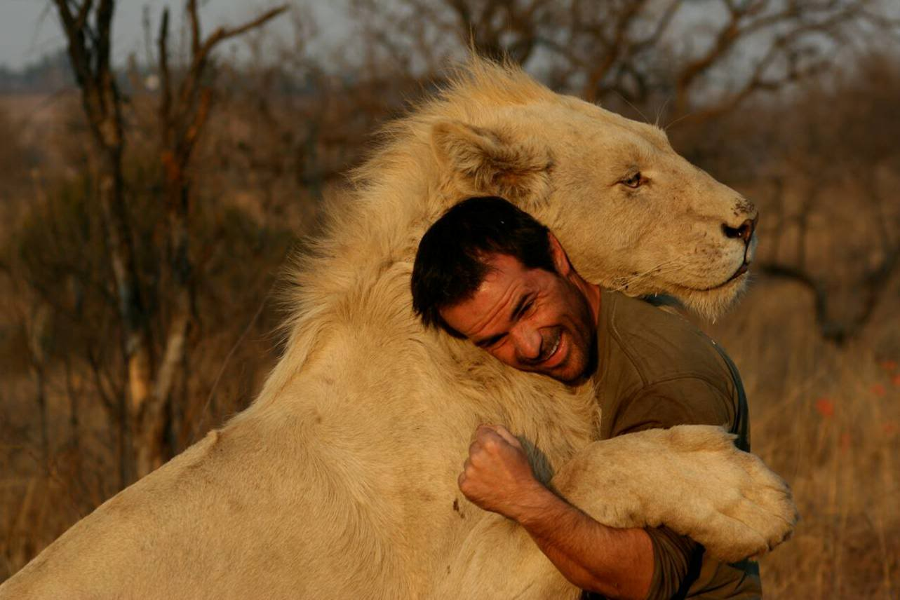 kevin richardson lion