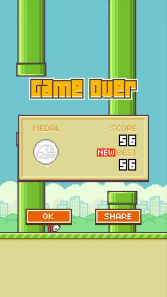 score flappy bird we like it