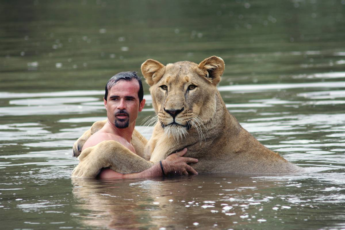 kevin richardson lion go pro calin eau