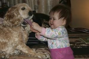 bébé chien amitié