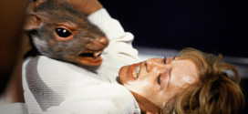 rat geant suede bronx
