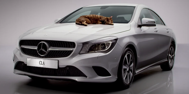 des chats testent la nouvelle mercedes cla. Black Bedroom Furniture Sets. Home Design Ideas