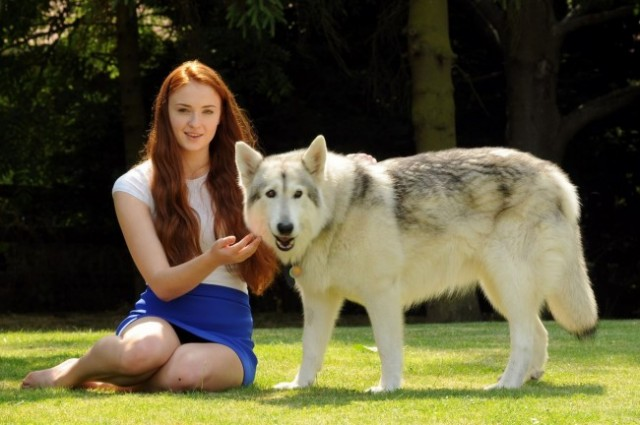 sophie turner et son chien