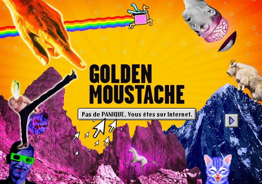 golden moustache pv nova