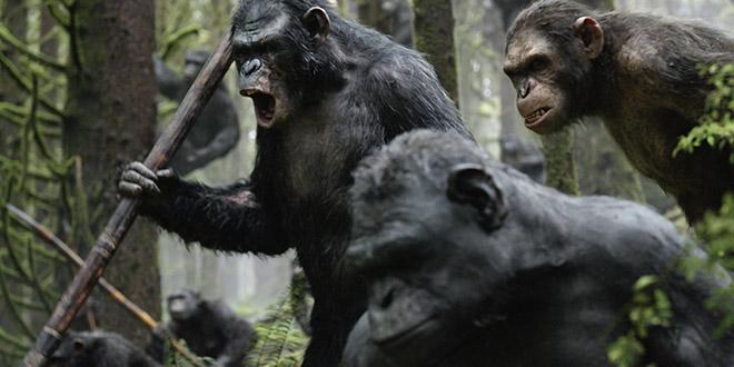 la planete des singes film