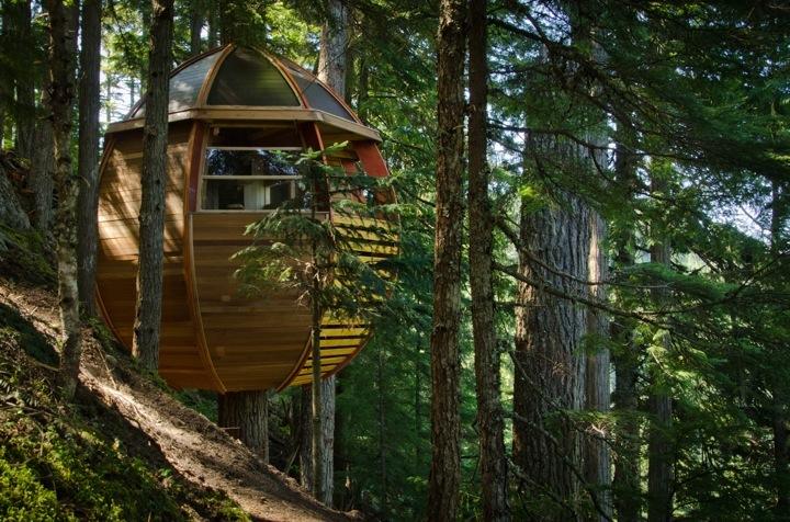 top maisons insolites maison oeuf bois canada