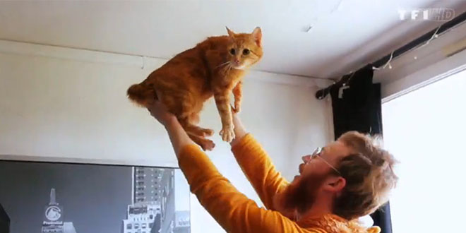 geoffrey maltraite son chat