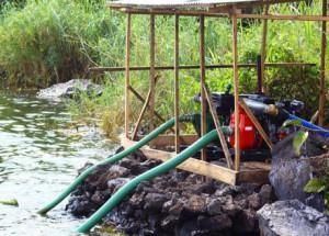 un adolescent vide un étang pour récupérer son portable