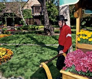 neverland ranch michael jackson mis en vente