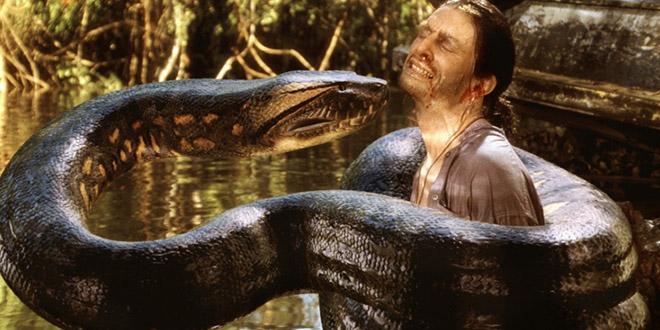 anaconda geant jaune bresil