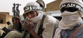 djihadistes cover