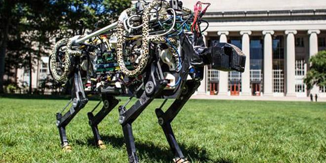 robot guepard