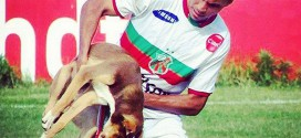 Eduardo Mandai bresil chien mordu but
