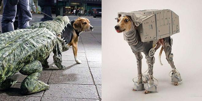 deguisement halloween animaux chiens