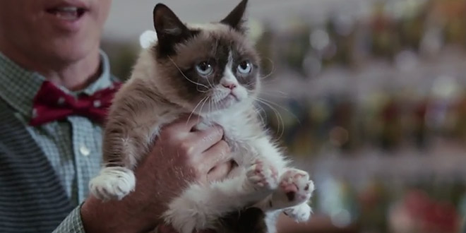 Grumpy Cat's Worst Christmas Eve