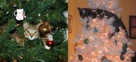 chat noel deco arbre