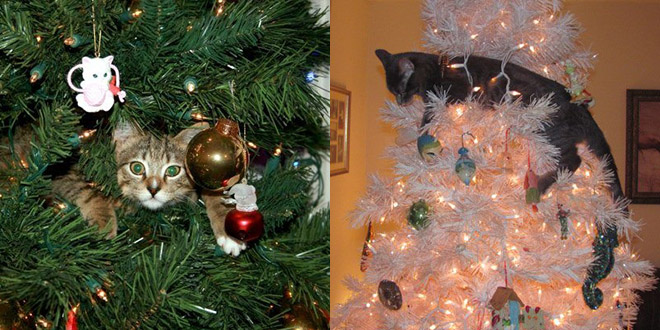 chat noel deco arbre