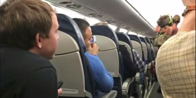cochon dans un avion