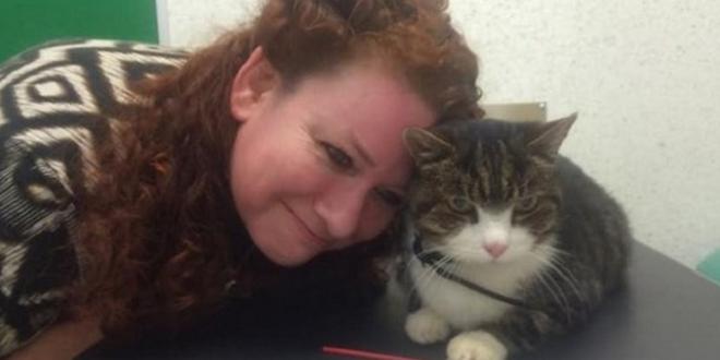 elle retrouve son chat 12 ans apres