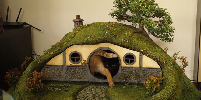 ils construisent une maison de hobbit pour chats. Black Bedroom Furniture Sets. Home Design Ideas