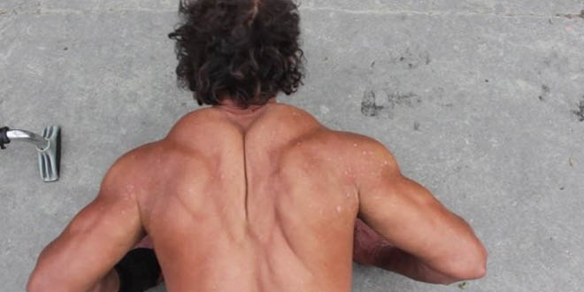 sdf bodybuilder