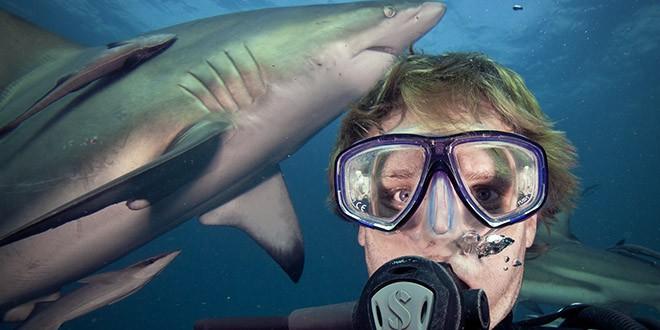 Aaron Gekoski requin selfie 2