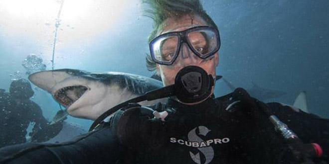 Aaron Gekoski requin selfie eau