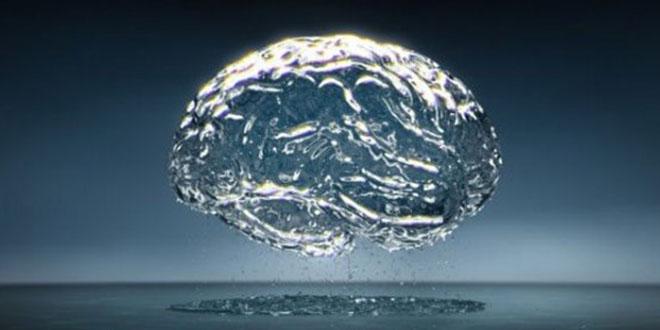 eau dans le cerveau