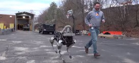 spot boston chien robot