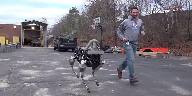 spot boston chien robot