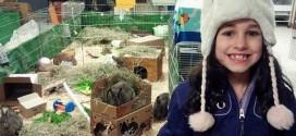 Kiaha vend peluche pour vrais animaux don aide