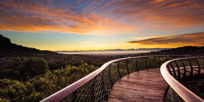 Kirstenbosch jardin botanique coucher soleil