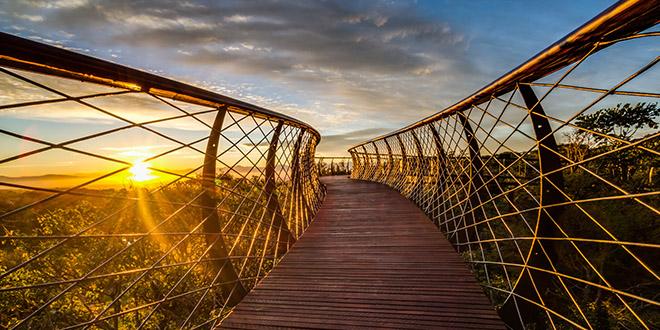 Kirstenbosch jardin botanique parc afrique du sud unesco