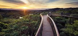 Kirstenbosch jardin botanique parc cap