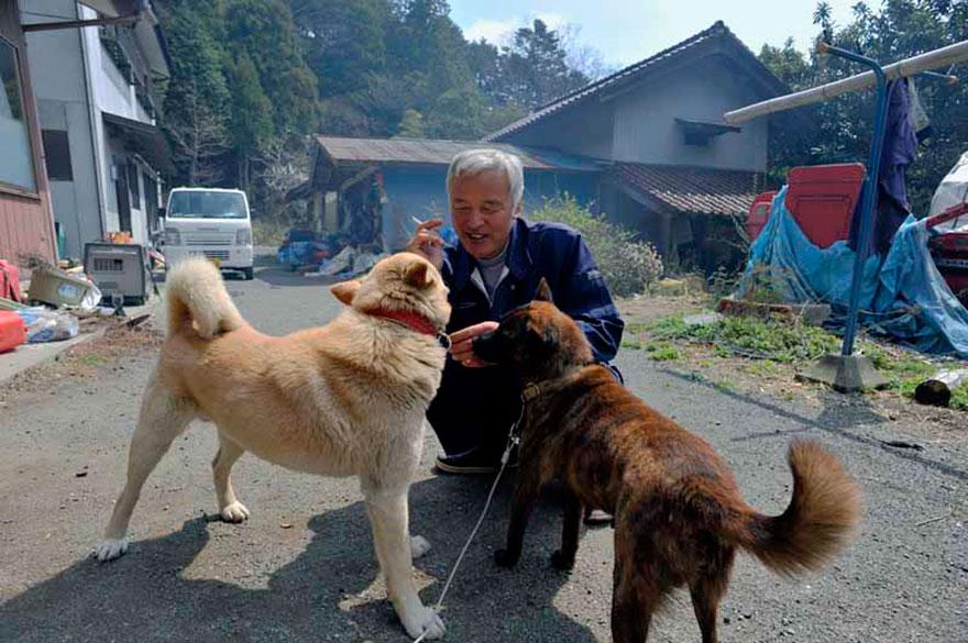 Naoto Matsumura fukushima animaux japon dangereux