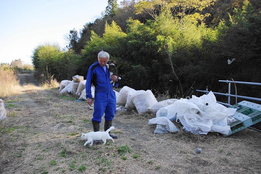 Naoto Matsumura fukushima animaux japon
