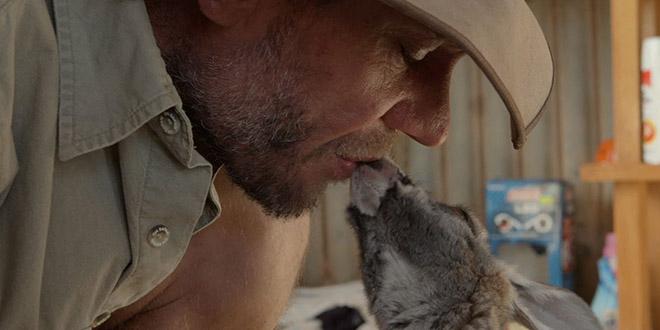 kangourous refuge bebes