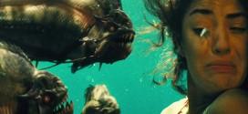 attaque piranhas riviere bresil