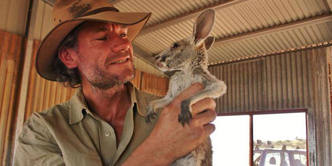 kangourous refuge