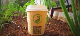 reduce reuse grow verre biodegradable