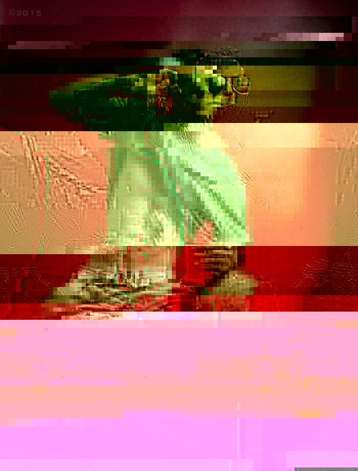 victimes-guerres-amputés-photographe-michael-stokes-fierté-soldats