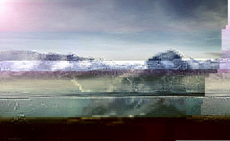 Turtle-Iceberg-waterW__880