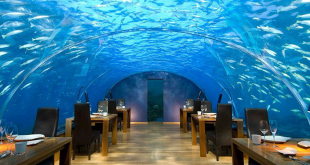 restaurant-du-futur