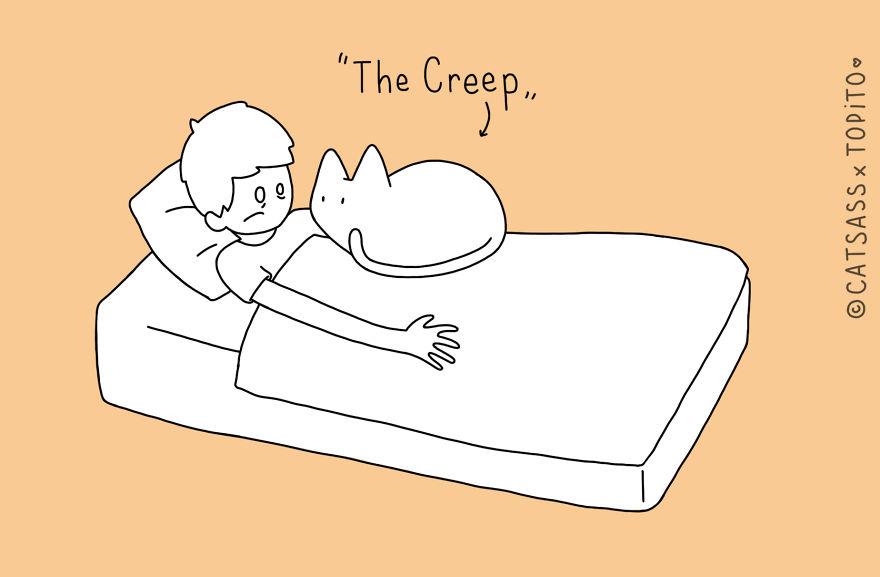 10-postions-quand-tu-dors-avec-ton-chat