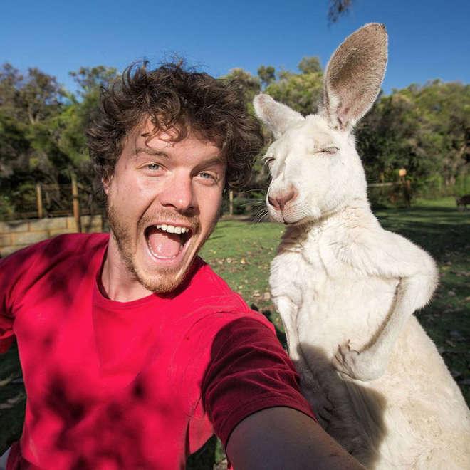 hommes-prend-des-selfies-avec-des-animaux--maître-des-selfies
