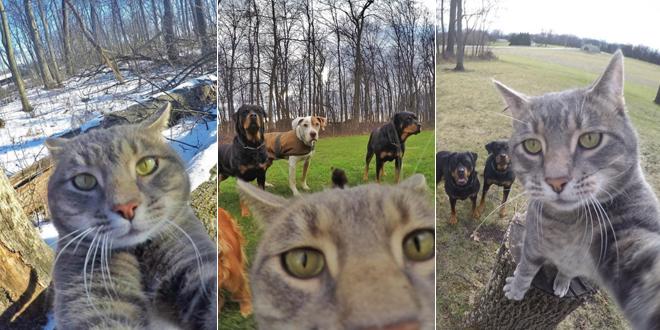 chat-manny-selfie-gopro-yoremahm