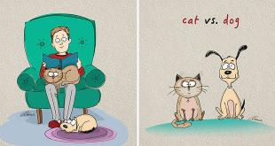 realite-cat-vs-dog