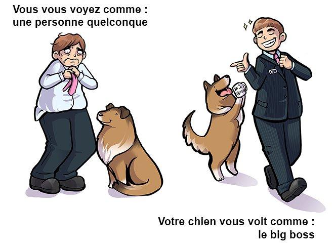 comment-un-chien-voit-son-maître-vs-comment-son-maître-se-voit