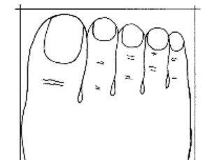 forme-des-pieds-reflette-votre-personnalité-pied-carré
