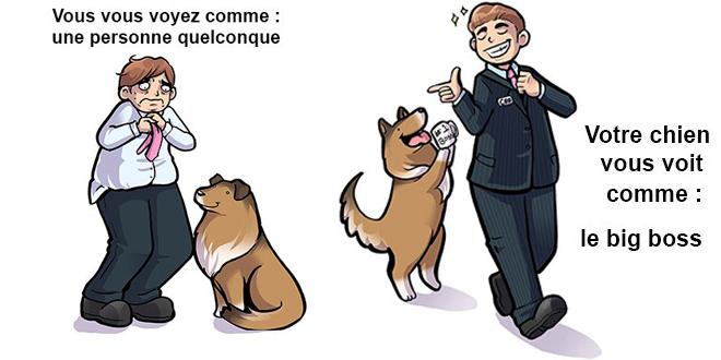 comment-un-chien-voit-son-maitre-vs-comment-le-maitre-voit-son-chien